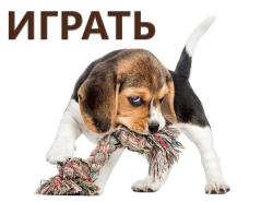 Ирушки для собак